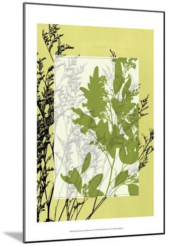 Translucent Wildflowers IV-Jennifer Goldberger-Mounted Art Print