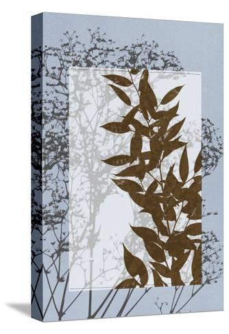 Translucent Wildflowers VI-Jennifer Goldberger-Stretched Canvas Print