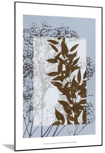 Translucent Wildflowers VI-Jennifer Goldberger-Mounted Art Print