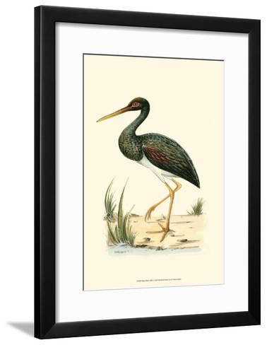Water Birds I--Framed Art Print