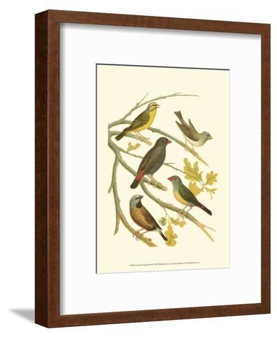 Canaries and Cage Birds III-Cassel-Framed Art Print