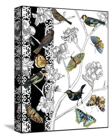 Aviary I-Chariklia Zarris-Stretched Canvas Print