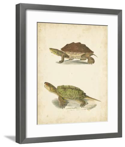 Turtle Duo II-J^W^ Hill-Framed Art Print