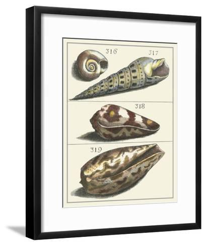 Seashell Menagerie V--Framed Art Print