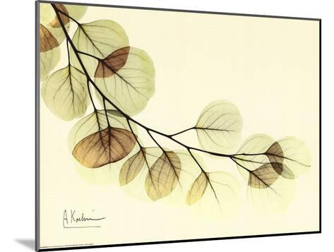 Sage Eucalyptus Leaves II-Albert Koetsier-Mounted Art Print