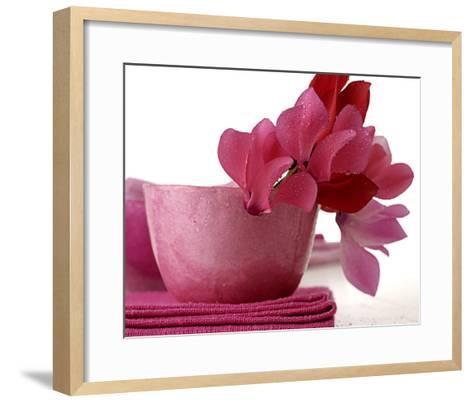 Pink Cyclamens--Framed Art Print