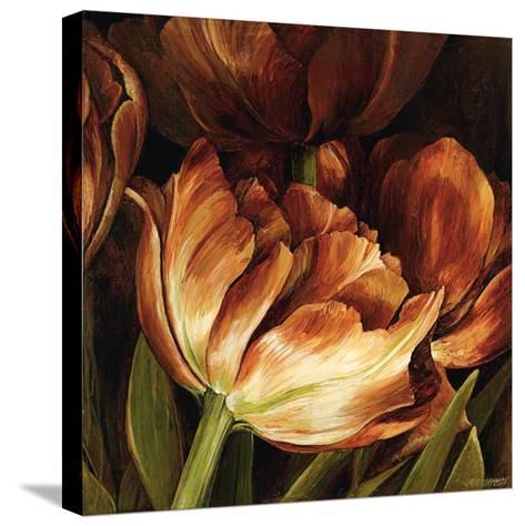 Color Harmony II-Linda Thompson-Stretched Canvas Print