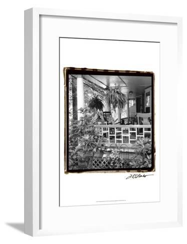 American Breeze IX-Laura Denardo-Framed Art Print