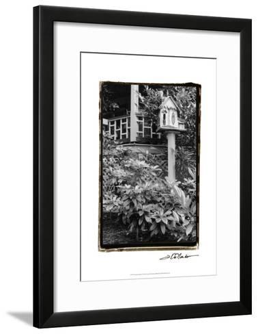 American Breeze V-Laura Denardo-Framed Art Print
