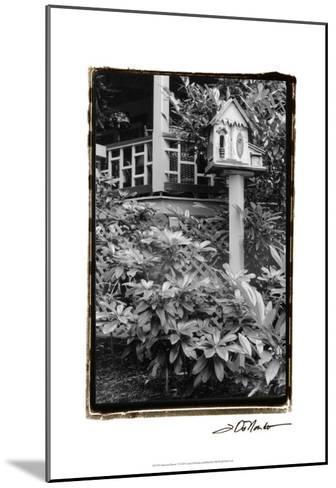 American Breeze V-Laura Denardo-Mounted Art Print