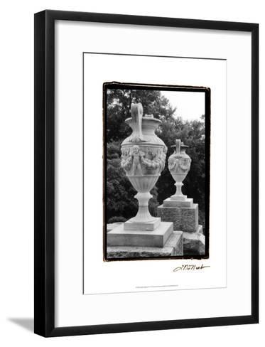 Garden Elegance IV-Laura Denardo-Framed Art Print