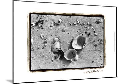 Sand Treasures IV-Laura Denardo-Mounted Art Print