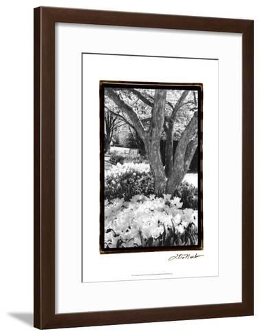 Springtime Garden VI-Laura Denardo-Framed Art Print