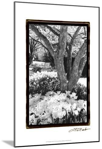 Springtime Garden VI-Laura Denardo-Mounted Art Print