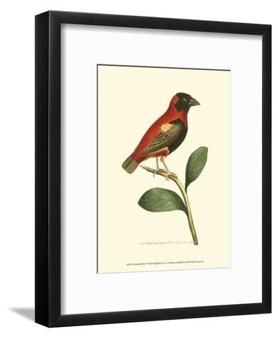Crimson Birds I-Frederick P^ Nodder-Framed Art Print