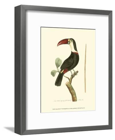 Crimson Birds VI-Frederick P^ Nodder-Framed Art Print