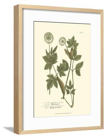 Leaves IV-Johann Wilhelm Weinmann-Framed Art Print
