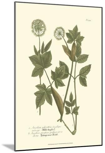 Leaves IV-Johann Wilhelm Weinmann-Mounted Art Print
