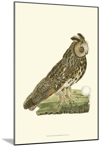 Owls III-Nozeman-Mounted Art Print