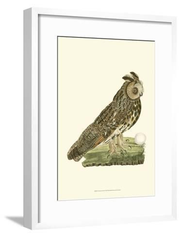 Owls III-Nozeman-Framed Art Print