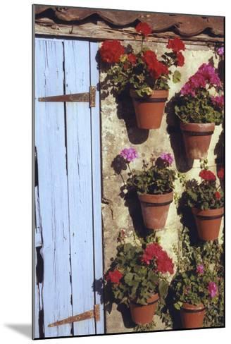 Geranium Wall-Meg Mccomb-Mounted Giclee Print