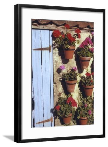 Geranium Wall-Meg Mccomb-Framed Art Print