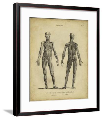 Anatomy Study III-Jack Wilkes-Framed Art Print