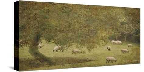 English Countryside IV-Terry Lawrence-Stretched Canvas Print