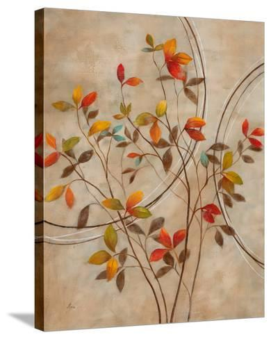 Autumn's Delight I-Nan-Stretched Canvas Print
