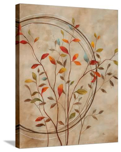 Autumn's Delight II-Nan-Stretched Canvas Print