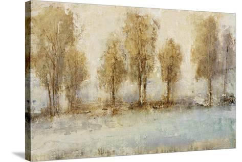 Tranquilands III-Tim O'toole-Stretched Canvas Print