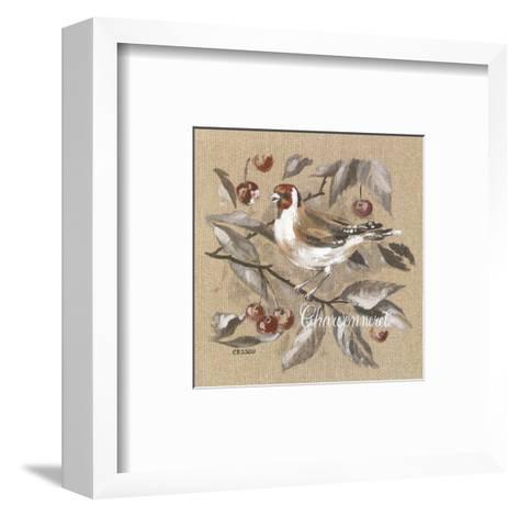 Charbonneret-Pascal Cessou-Framed Art Print