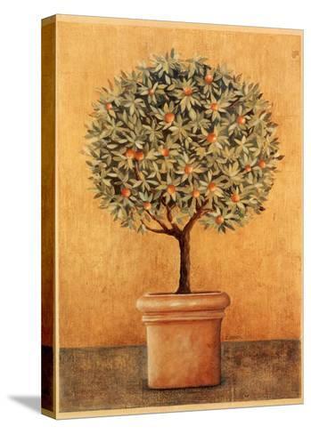 Oranger I-Laurence David-Stretched Canvas Print