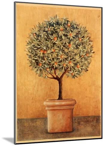 Oranger I-Laurence David-Mounted Art Print