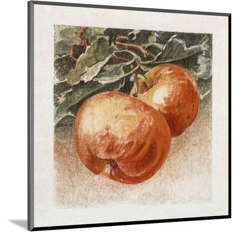 Pommes-Laurence David-Mounted Art Print