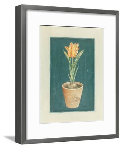 Tulipe Jaspé-Laurence David-Framed Art Print