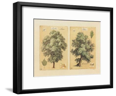?rable et Ch?ne-Laurence David-Framed Art Print