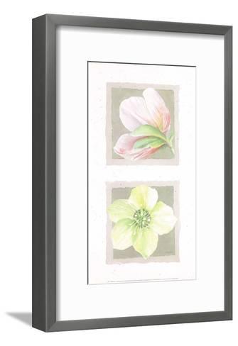 Hélébores Ii-Laurence David-Framed Art Print