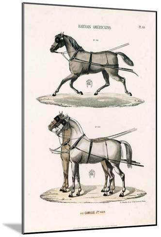 Harnais Américains--Mounted Art Print