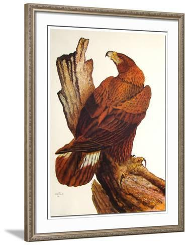 Golden Eagle-Dale Hauck-Framed Art Print