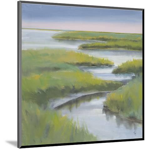Winding Everglade-Don Almquist-Mounted Giclee Print