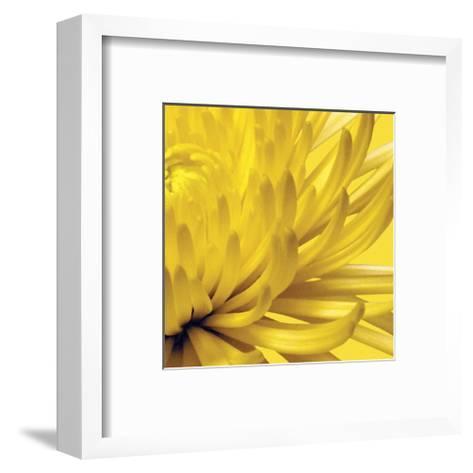 Yellow Mum II-Jenny Kraft-Framed Art Print
