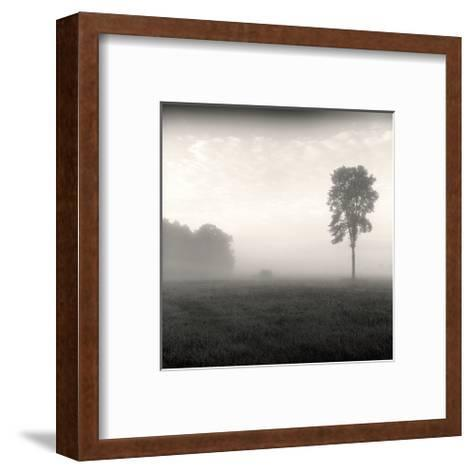Tree, Study, no. 2-Andrew Ren-Framed Art Print