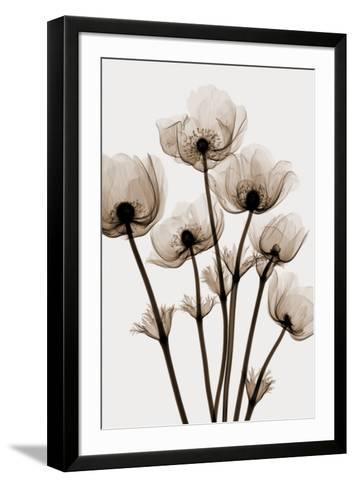 Windflowers-Steven N^ Meyers-Framed Art Print