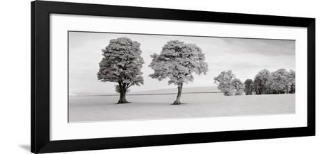 Edzell, Scotland-Helmut Hirler-Framed Art Print
