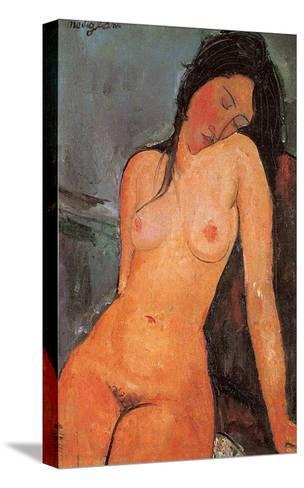 Seated Nude, c.1917-Amedeo Modigliani-Stretched Canvas Print