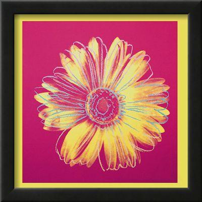 Daisy, c.1982 (Fuschia and Yellow) Art Print by Andy Warhol at Art.com