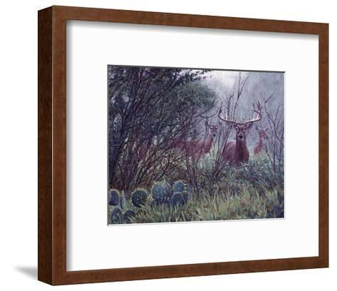 Lone Star Whitetail-John Banovich-Framed Art Print