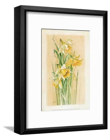 Jonquilles I-Laurence David-Framed Art Print
