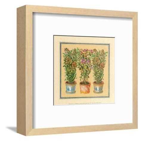 Flower II--Framed Art Print